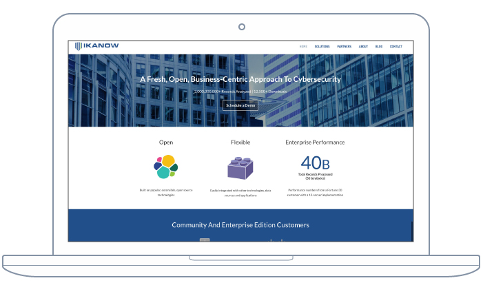Website re-design created by BKW Partners for cybersec firm, IKANOW
